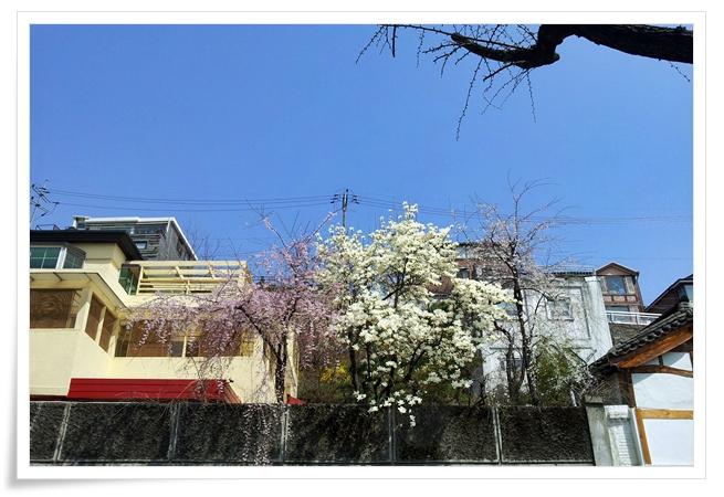 2012-04-15-2.jpg